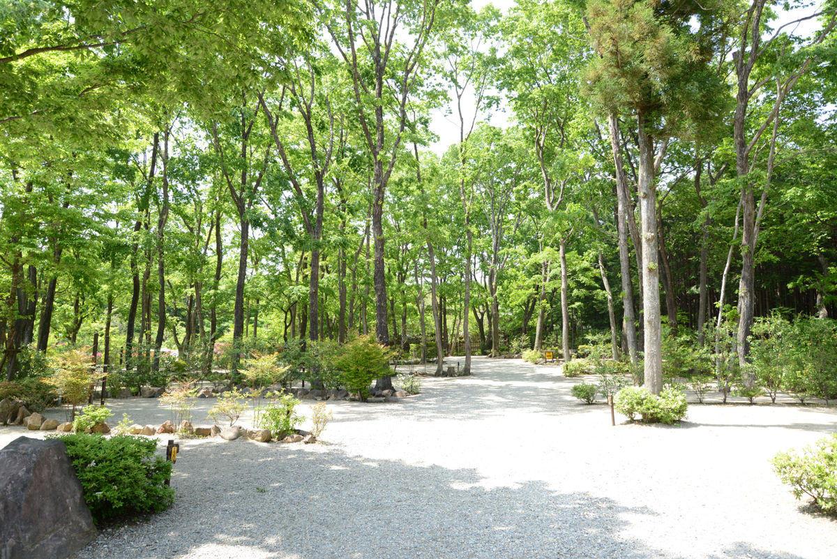 木陰のオートキャンプエリア